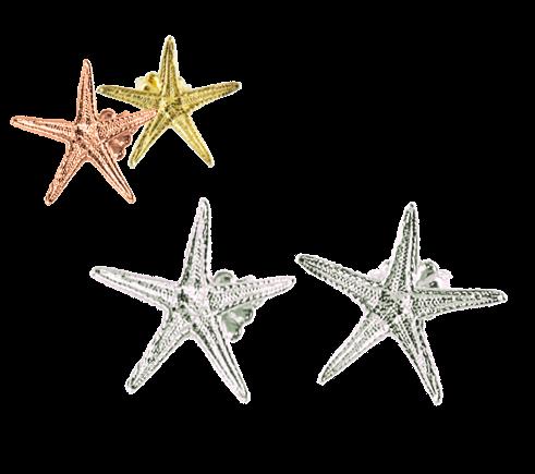 Starfish Small