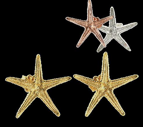 Starfish Large